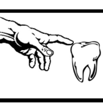 TOUCH DENTAL STUDIO - Dental Laboratory - Kempton Park